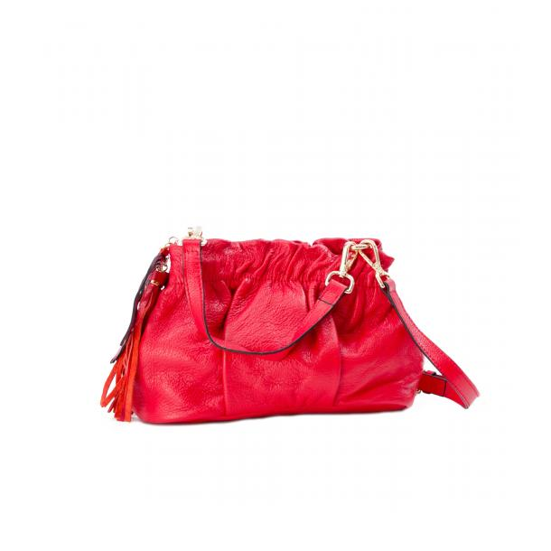 Golden Gate Park RedHandle and Shoulder Bag full-size #1